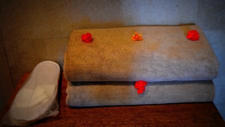 shivadya-resorts-bouri-spa